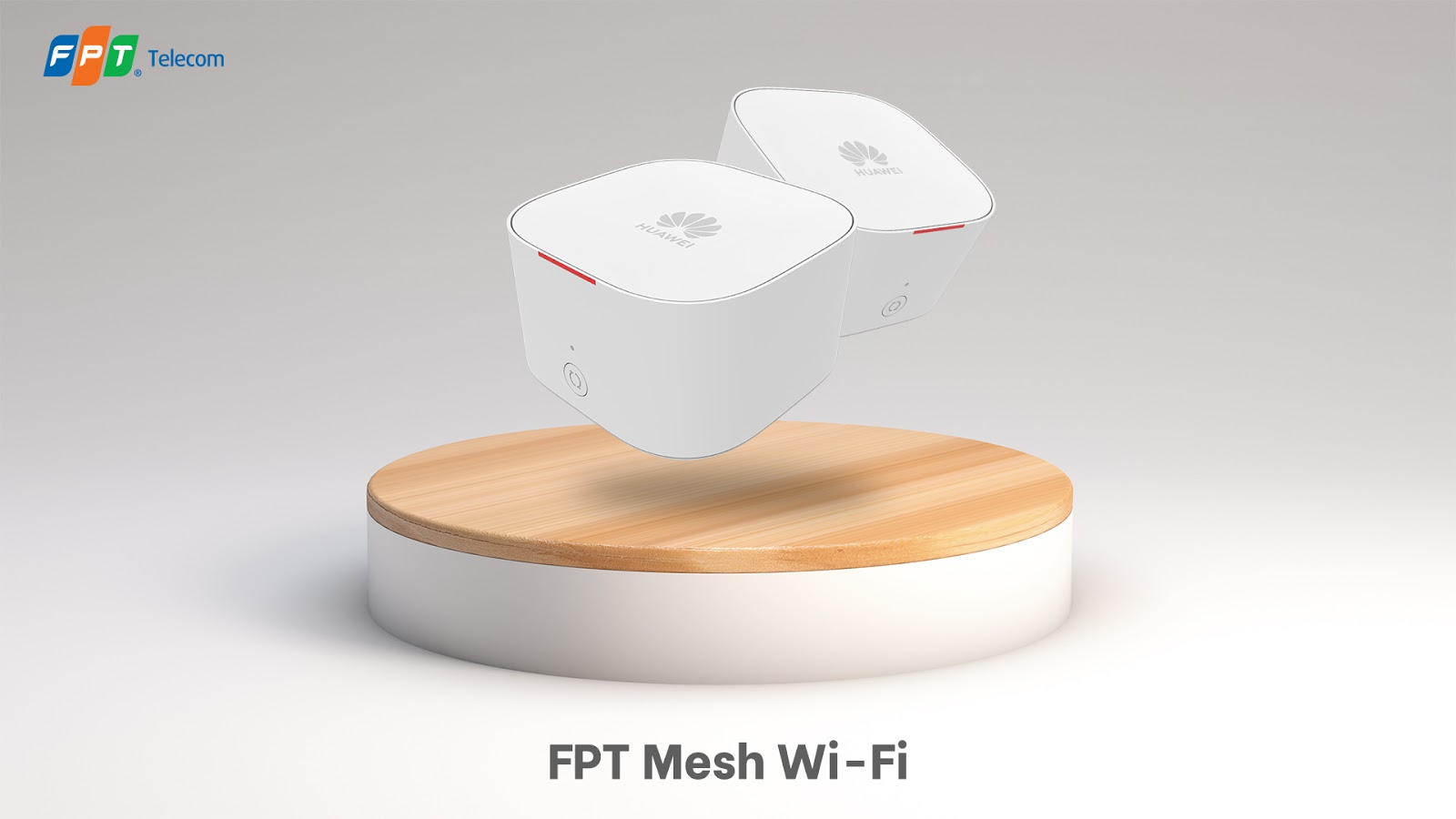 Mesh WiFi FPt